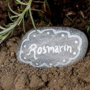 Beetbeschriftung auf Kieselstein für Rosmarin