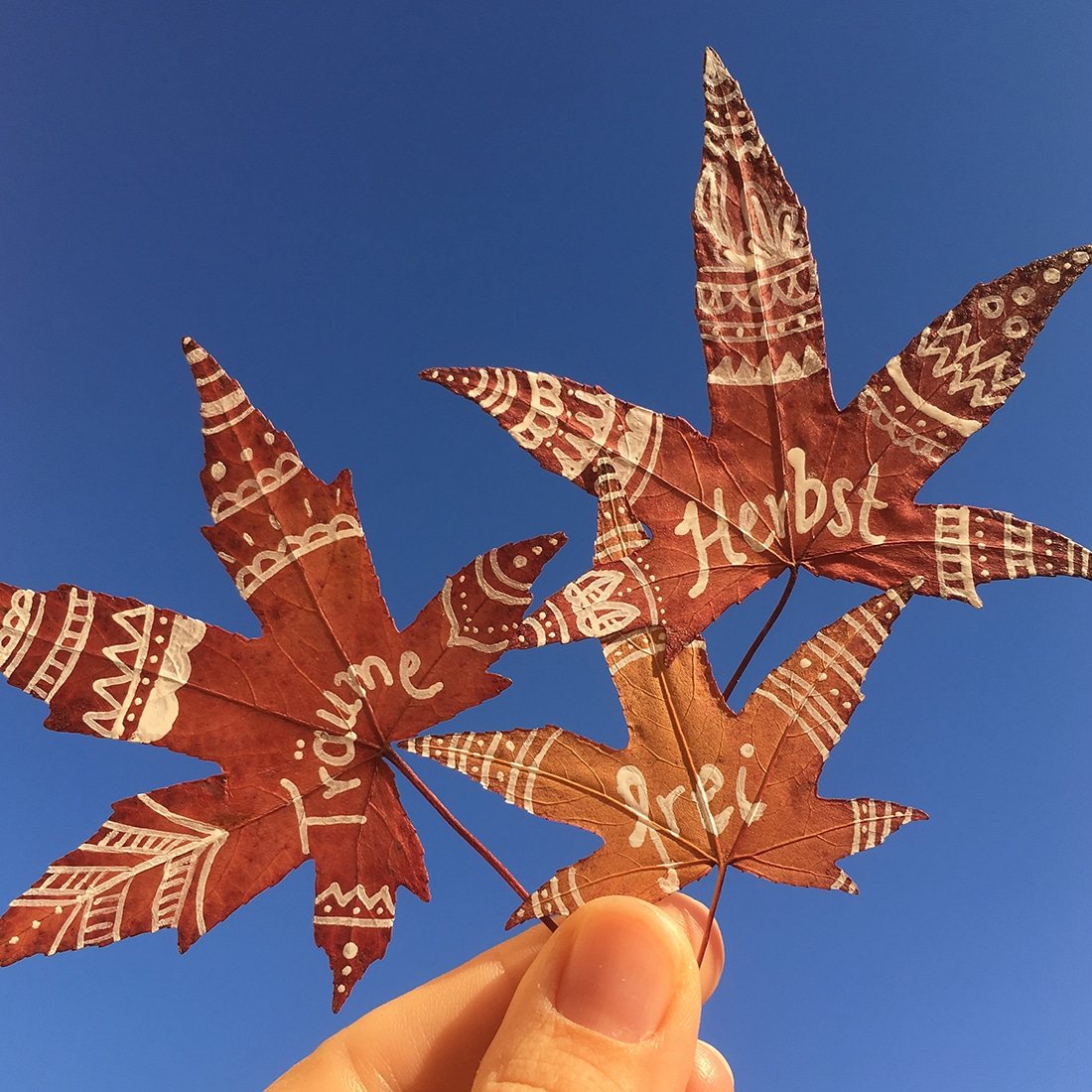 Bemalte und beschriftete Blätter vor blauem Himmel