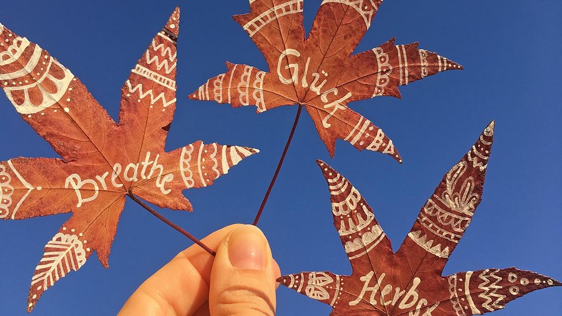 Mandala-Blätter vor blauem Himmel